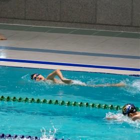 [GH5S, 200대포] 수영사진