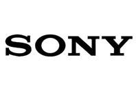 소니 신제품은 곡면 센서 RX 카메라?