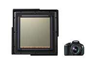 캐논, 20 x 20cm 초대형 CMOS 발표