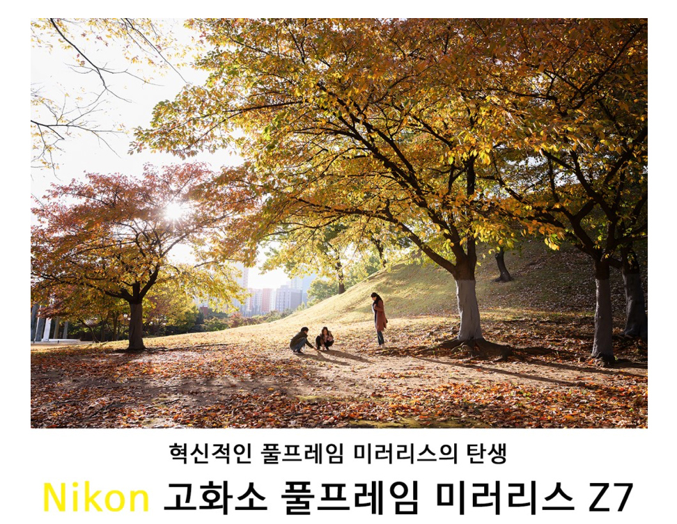 [Nikon Z7 리뷰 4] NIKKOR Z 24-70mm f/4 S와 함께한 올림픽공원 가족 나들이